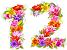 12-flowers