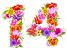 14-flowers