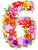 6-flowers